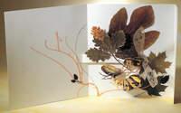 Натюрморт с бабочкой из бумаги